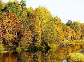 Photo of Ловля карпа осенью